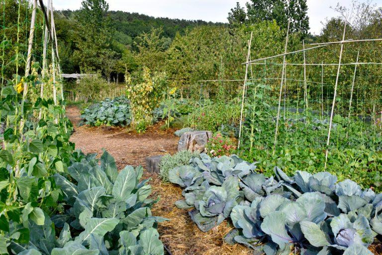 Présentation du groupe Agro-écologie