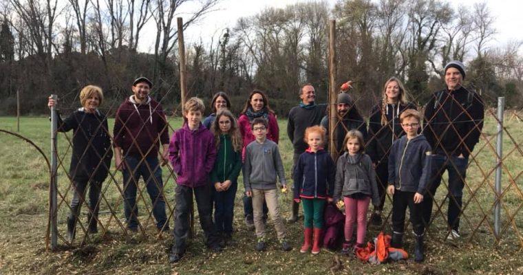 Chantier participatif «tressage d'osier vivant»