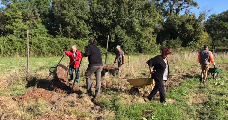 Chantier participatif «Préparer le sol pour l'hiver»