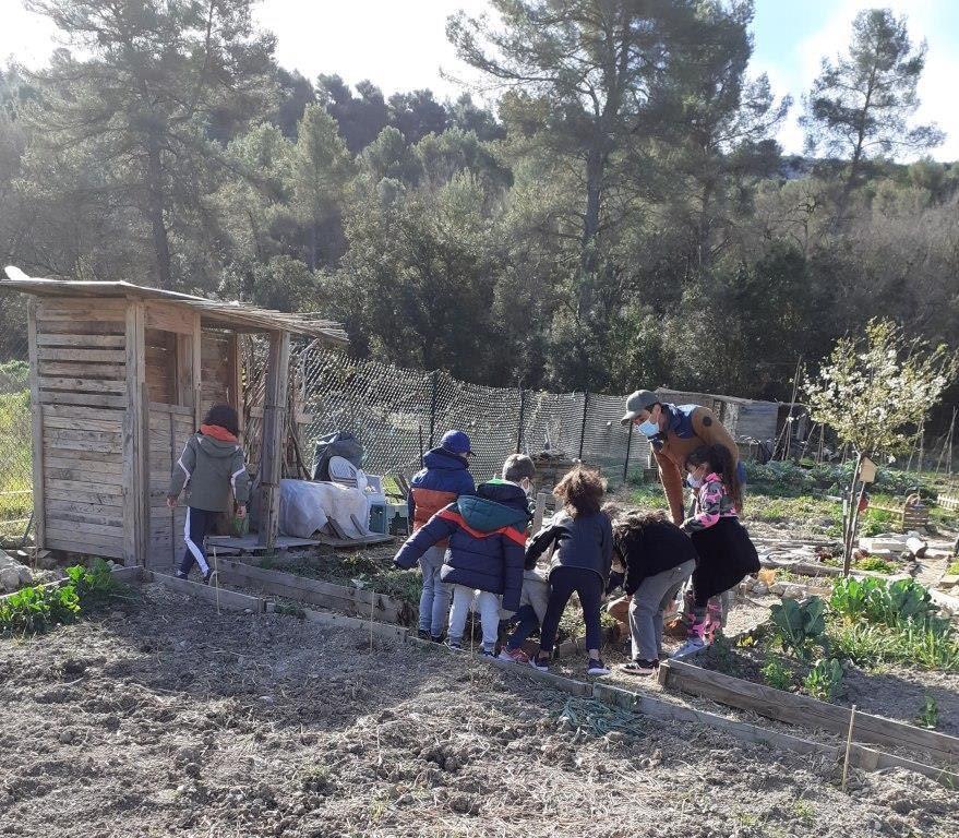 Visite des jardins partagés avec l'école primaire